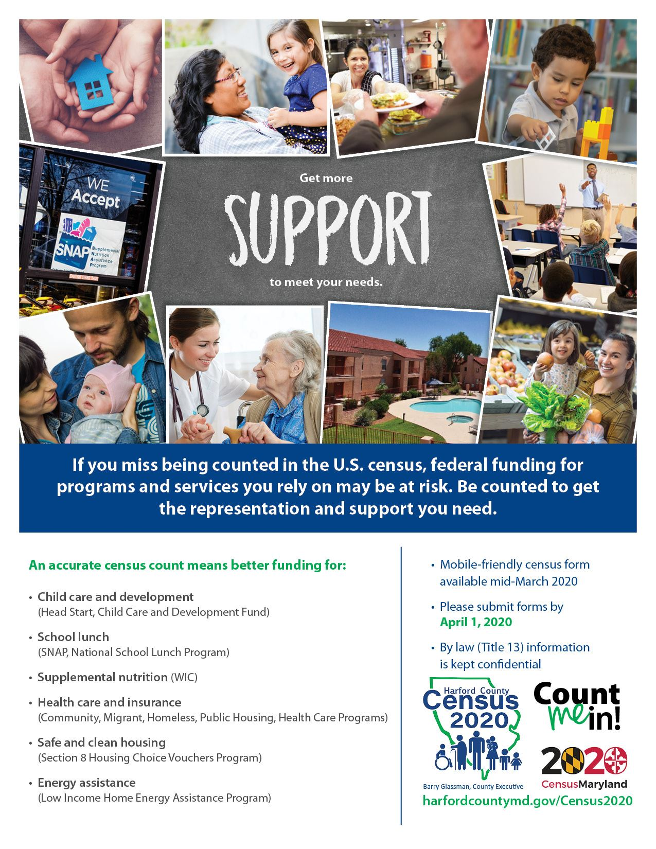 HCGCensus Low Income Flyer
