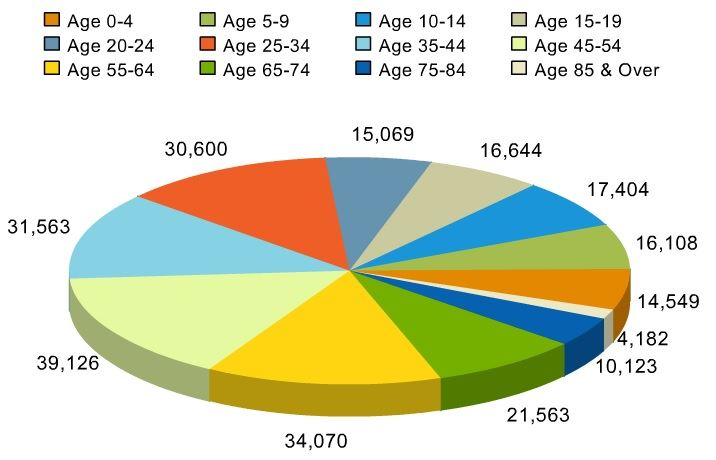 2014 Estimated Population by Age